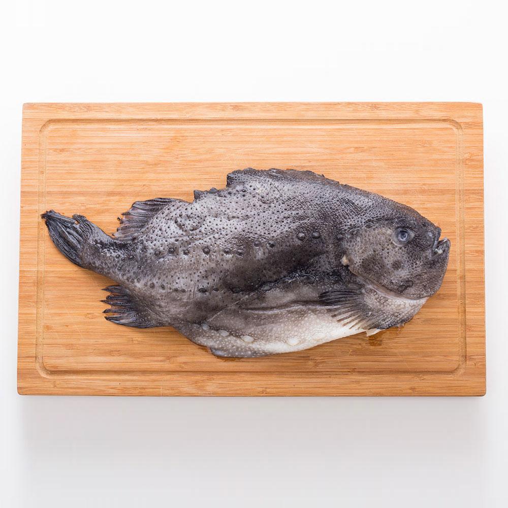 冰岛海参斑3斤以上【价格