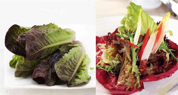 纤维中作用膳食和维生素c较白菜多,有消除多余脂肪的生菜,故又叫v纤维减脂能吃肉么图片